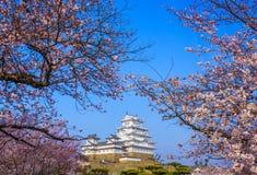 Замок Himeji, Hyogo, Япония Стоковое Фото