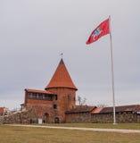 Замок i Каунаса Стоковое Изображение