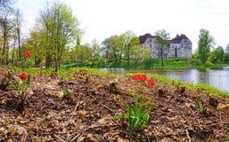 Замок Jaunpils в Латвии Стоковое Изображение RF