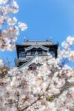 Замок Kumamoto весной Стоковая Фотография