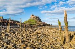 Замок Lindisfarne, Нортумберленд, Англия Стоковые Фотографии RF