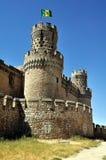 Замок Manzanares el реальный (вертикальный) Стоковое Изображение RF