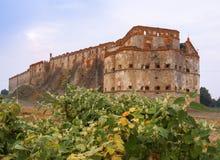 Замок Medzhybizh, Украина Горизонтальный Восток стоковое фото rf
