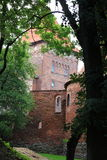 Замок Nidzica Польши старый Стоковое Фото