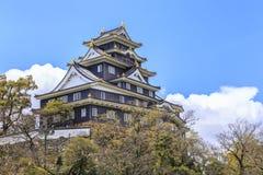 Замок Okayama Стоковое Изображение RF