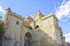 Замок Olite, Наварра Стоковая Фотография RF