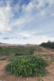 Замок Oropesa Del Mar Стоковые Изображения
