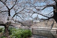 Замок Osakajo Осака, Киото, Япония Стоковые Изображения RF