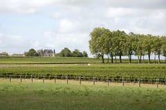 Замок Palmer Margaux Франция стоковые изображения rf
