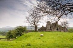 Замок Pendragon стоковая фотография rf