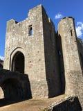 Замок Raglan, Уэльс Стоковая Фотография RF