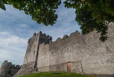 Замок Ross с листьями дерева Стоковые Изображения RF