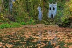 Замок Sneznik отражая в пруде Стоковая Фотография