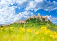 Замок Spis на весне Стоковое Изображение RF