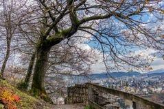 Замок Stein Бадена в Швейцарии - 3 Стоковое Фото