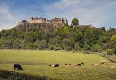 Замок Stirling Стоковое Изображение RF