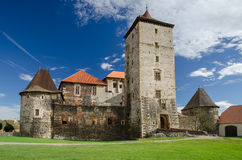 Замок Svihov, чехия Стоковое Изображение RF