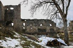Замок TematÃn Стоковая Фотография