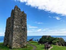 Замок Tenby стоковая фотография rf
