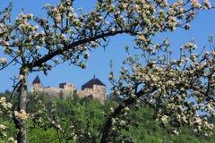 Замок 02 Tocnik Стоковое фото RF