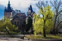 Замок Vajdahunyad стоковое изображение rf
