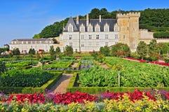 Замок Villandry с садом Эндром et центром Францией Луары стоковое изображение rf