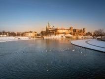 Замок Wawel в зимнем времени стоковые фото