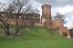 Замок Wawel стоковое фото