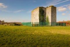 Замок Woodstock Athy Kildare Ирландия стоковые изображения