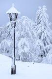 Замороженная лампа в зиме в холмах Стоковое фото RF
