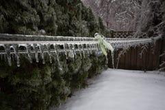 Замороженная бельевая веревка после шторма льда Стоковые Изображения RF