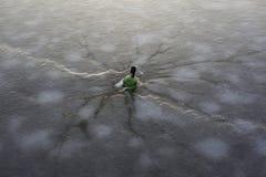 Замороженная бутылка внутри льда. Стоковое Фото