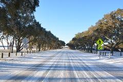 Замороженная дорога на пляже Стоковое фото RF