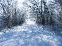 замороженная дорога Стоковые Изображения