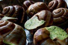 Замороженная еда улитки с маслом чеснока Стоковое Изображение