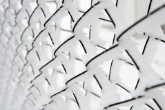 Замороженная загородка Стоковое Изображение RF