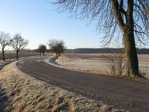 замороженная земля Стоковые Изображения RF