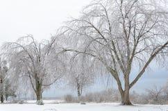 замороженная зима ландшафта стоковое фото