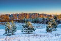 замороженная зима воды захода солнца ландшафта травы Стоковое Изображение RF