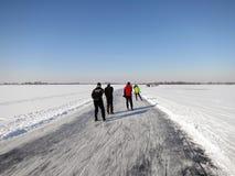 замороженная зима конькобежцев ландшафта льда Голландии Стоковые Изображения