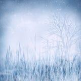 замороженная зима ландшафта Стоковое Изображение