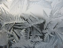замороженная зима окна Стоковые Изображения