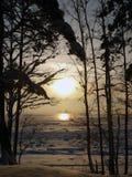 замороженная зима сезона ландшафта озера Стоковая Фотография RF