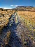 Замороженная дорога горы Стоковая Фотография