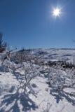 замороженная планета полнолуния вниз Стоковые Изображения RF