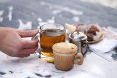 Замороженная рука с чаем Стоковое Изображение RF