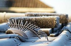 замороженная сгребалка Стоковые Фотографии RF