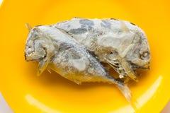 Замороженная скумбрия в оранжевом блюде Стоковое Фото