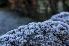 Замороженная стена страны Стоковые Фотографии RF
