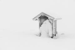 Замороженная хата Стоковое Изображение RF